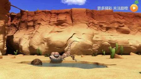 「幽默搞笑」「沙漠里的小伙伴系列」018好不容