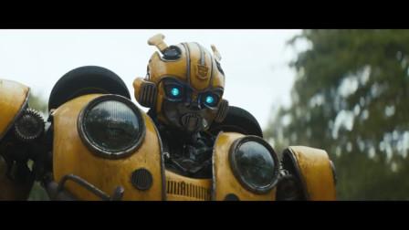 一分钟创意广告—大黄蜂