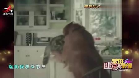 家庭幽默录像:偷吃完主人的汉堡,狗狗立马叼