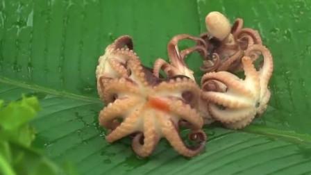广东农村美女在西瓜里煮章鱼,看着就很有食欲