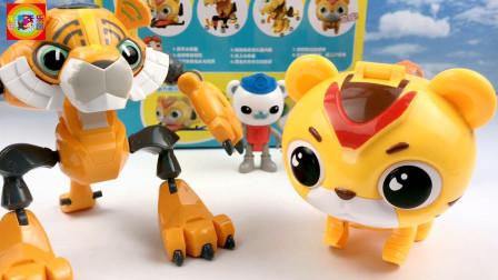 猪猪侠超星萌宠阿五玩具拆箱!