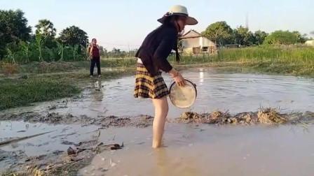 农村美女穿着时尚小短裙在地里搞野抓鱼,不怕