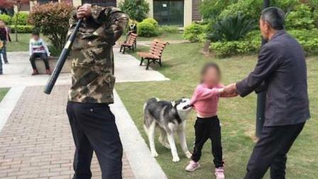 哈士奇咬住女孩不松口被物业人员持棍打死 狗主人仍未找到