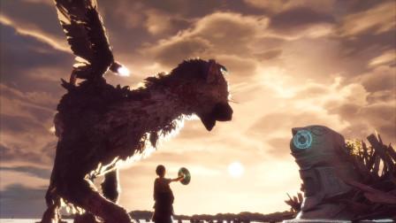 最后的守护者 食人大鹫