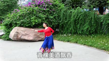 达州姹紫嫣红广场舞 藏族舞《我的家乡叫天堂》正背面演示 编舞凤凰六哥
