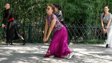 相约紫竹广场舞《我的九寨》大气豪迈 好看的藏族舞