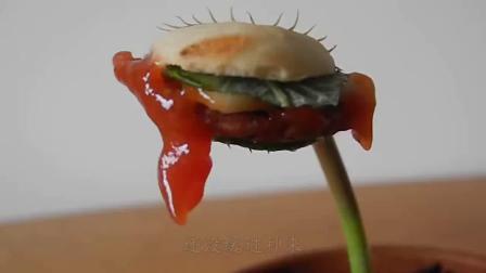 把薯条放进捕蝇草嘴里会怎样 小伙大胆一试 下一秒意外了