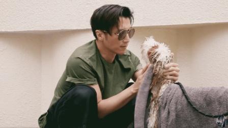 謝霆鋒晒視訊疑是王菲拍攝 兩人愛巢曝光