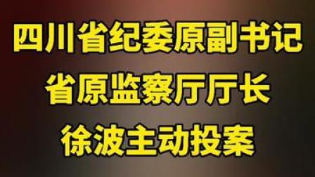 四川省纪委原副书记 省原监察厅厅长徐波主动投案
