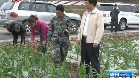 罗甸 兴仁遭受冰雹灾害 贵州新闻联播 130319