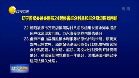 辽宁省纪委监委通报24起侵害群众利益和群众身边腐败问题