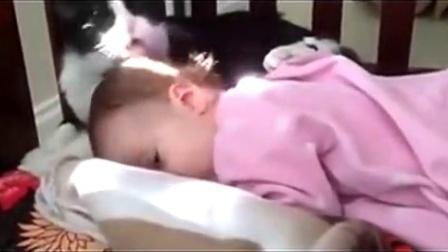 08 爆笑猫猫舌头舔女宝宝的头发-超级搞笑宝宝