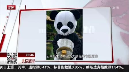 云南野生動物園為大熊貓建專屬廚房 北京您早 180707