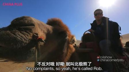 【司徒游记】老外敦煌骑骆驼过沙漠 鞋丢了