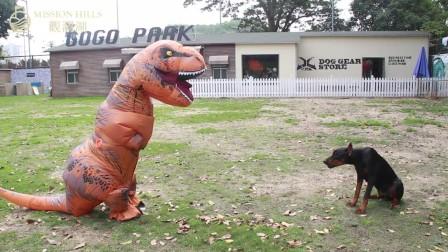 侏罗纪公园与观澜湖强强联手打造世界级恐龙主题公园