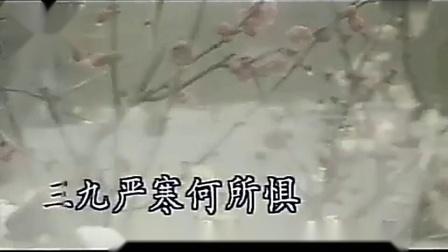 张也 - 红梅赞