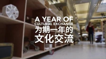 2015中英文化交流年宣传片