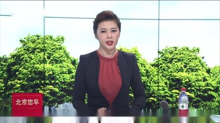 中央纪委国家监委网站 今年通报侵害群众利益问题275起
