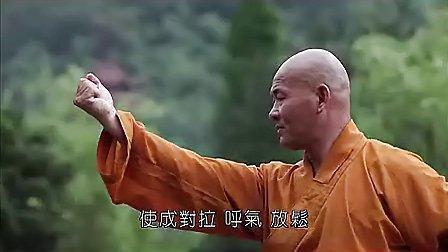 少林养生武术教程 分解释延祥韦陀十二式