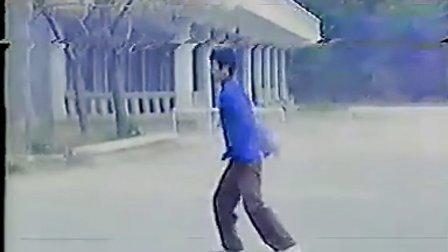 辽宁通背拳(1983年)