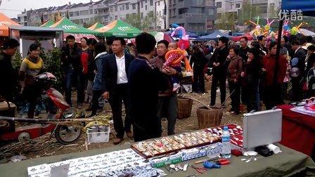 视频: 武汉市新洲旧街第十一届花朝节3