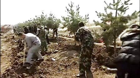 县纪检委开展义务植树活动