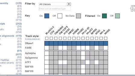 Viewing Ensembl Regulation and ENCODE Using the Matrix