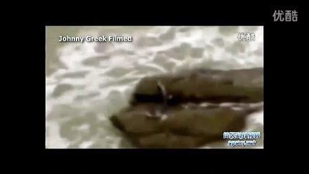 以色列美人鱼惊现暗礁!各细节剖析证实美人鱼存在【包包树热点】