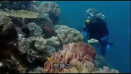 BBC纪录片蓝色星球(9)
