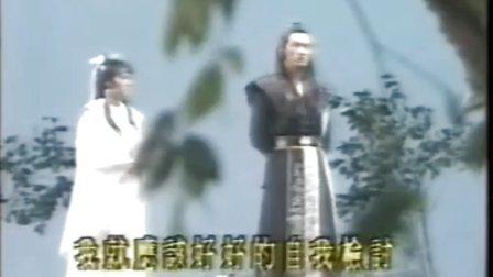 金剑雕翎[周绍栋版]25
