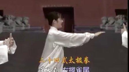 24式太极拳分解教学7-8