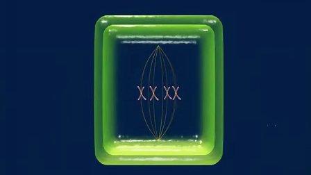 高中生物动画3D视频生命的基本单位细胞:有丝分裂