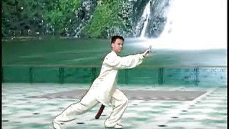 陈思坦42式太极剑3 第1段1正面示范
