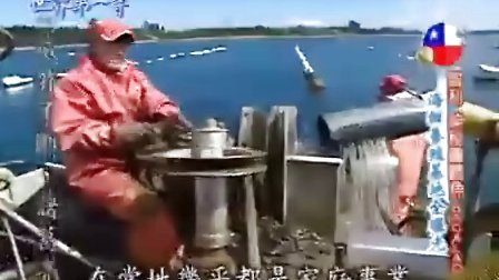 世界第一等20091209智利(神秘圆鳕鱼)[光速收集]