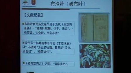 天津中医药大学张德芹教授发言