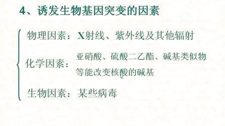 汉水丑生  高中生物 必修二 基因突变和基因重组