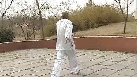 汤瓶七式拳实战教学(时振刚时晓武)A实战精选