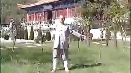 《少林达摩易筋经》少林寺释德杨法师演示讲解CD2