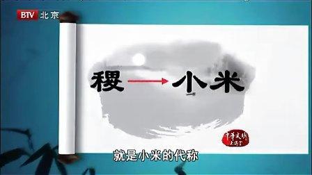 樊正伦《中医文化与养生-中华文明大讲堂》2、养生最根本的含义(全)
