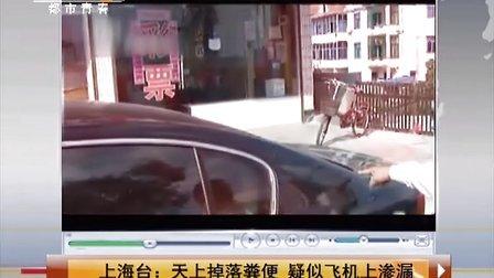 上海台:天空掉落粪便 疑似飞机上渗漏 天天网事 131103