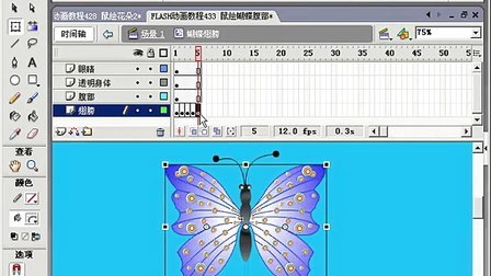 FLASH动画教程434 鼠绘蝴蝶4