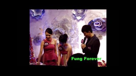 20131110 皇室堡紫醉花迷圣诞园揭幕礼