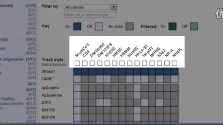 Using the Matrix to View RNASeq Models, ENCODE Data and More