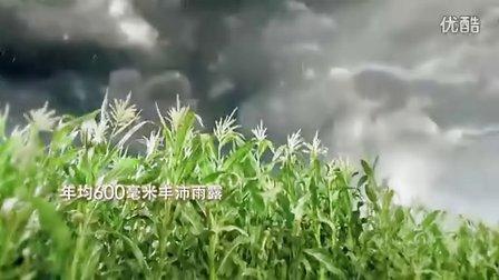 中粮福临门玉米油