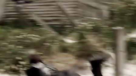 死亡飞车3高清