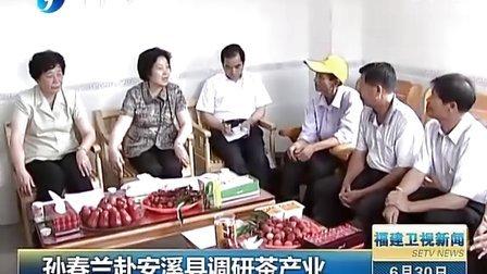 孙春兰赴安溪县调研茶产业 120630 福建卫视新闻