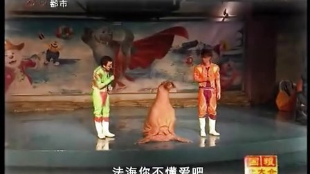 黑龙江电视台都市频道《新闻夜航》憨逗海象表演