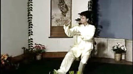 88式太极拳(01)