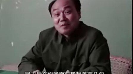 电视连续剧《来来往往》(4)许晴、濮存昕、吕丽萍