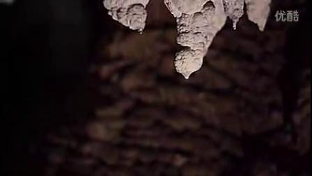 新西兰怀托摩萤火虫洞(Waitomo Glowworm Caves)